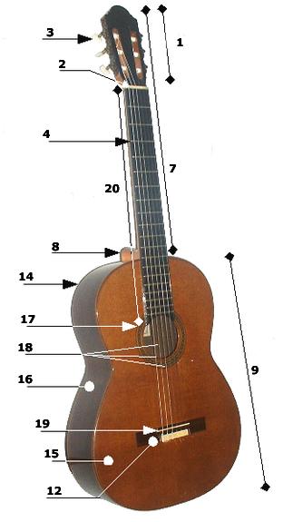 gitarın bölümleri